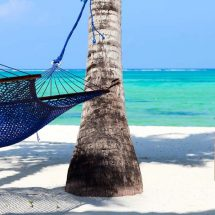 Relax on the Beach Zanzibar